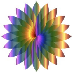 4website lotus gestyleerd iridescent